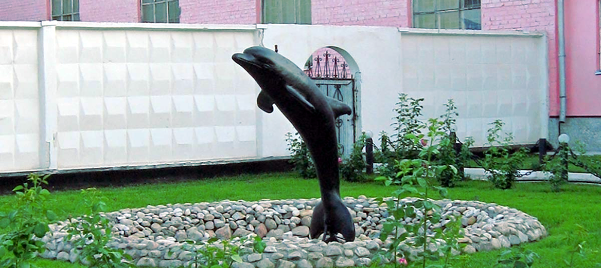 Чёрный дельфин
