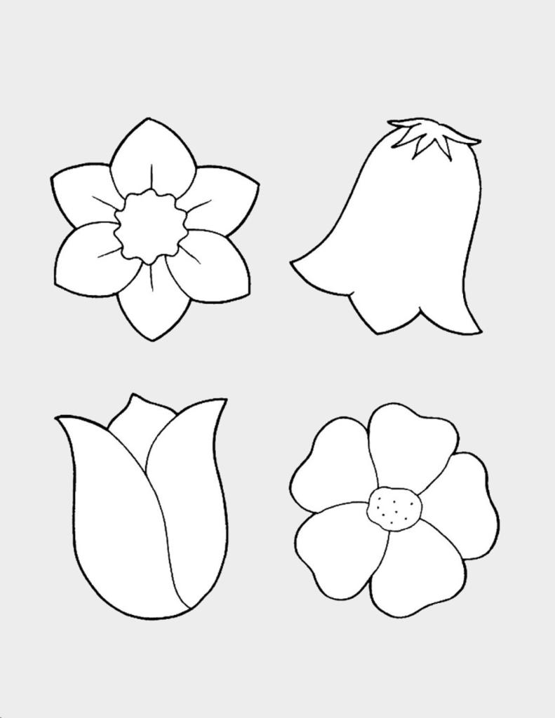 Макет цветов 3