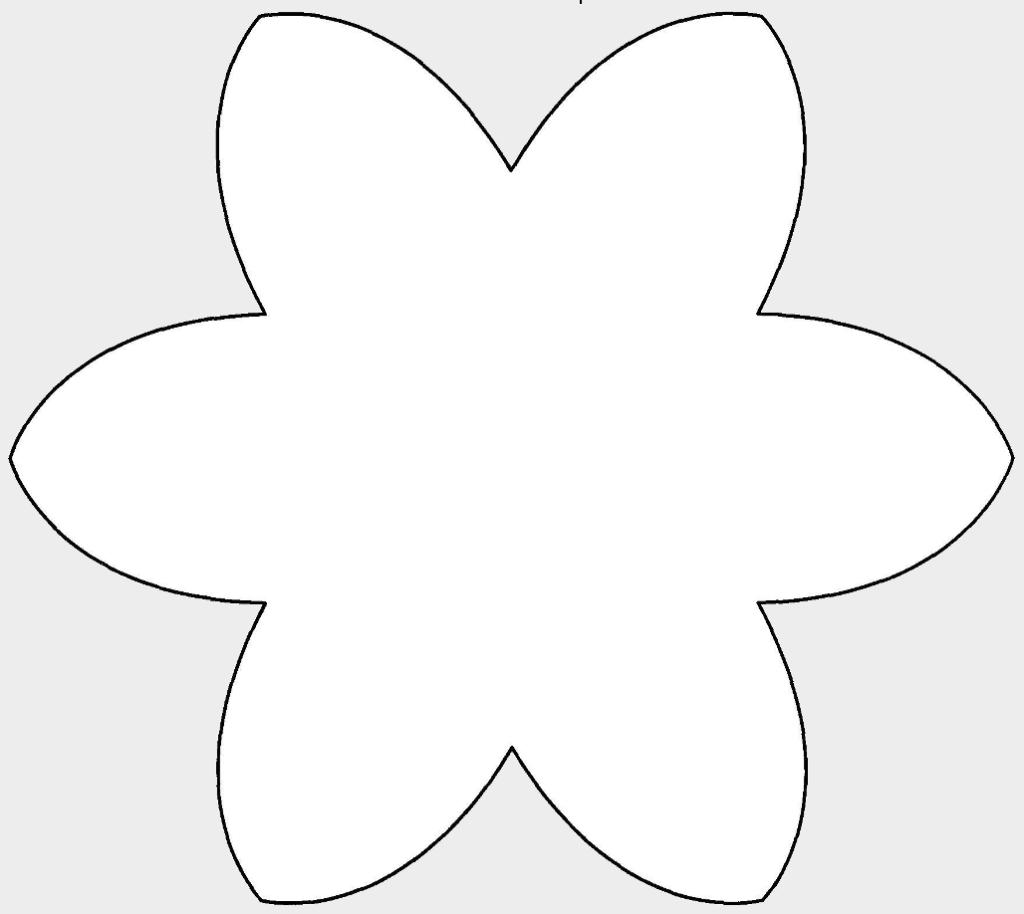 Макет цветов 6