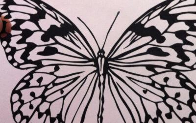 Макет бабочки: как и из чего делать?